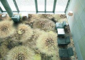 self-leveling-floor-interior-design-trends-8
