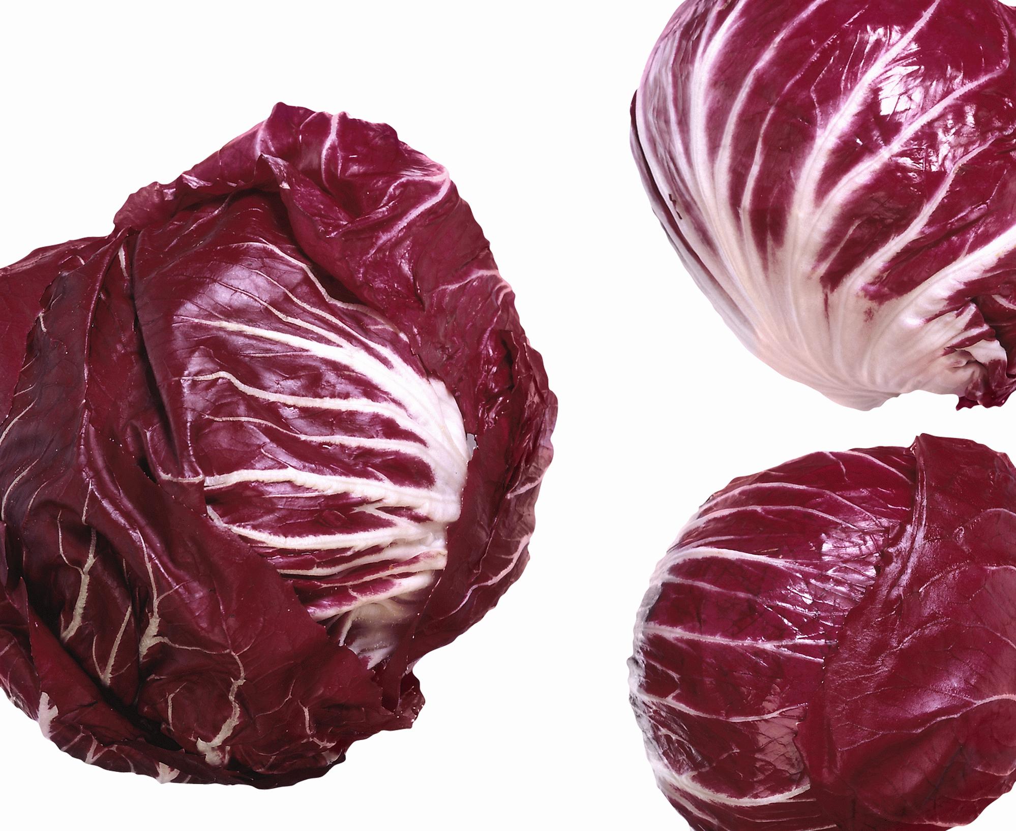 Краснокочанная капуста