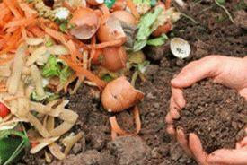 compost-pile-e1458488904114