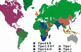 Виды розеток по странам