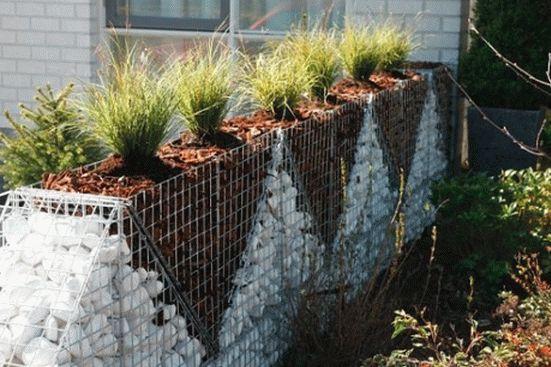 Забор - габион своими руками (фото)